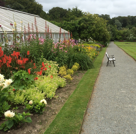 The Rare & Special Plant Fair at Mount Congreve