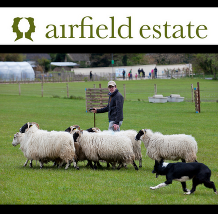 WOOLAPALOOZA Sheep and Farm Festival at Airfield Estate