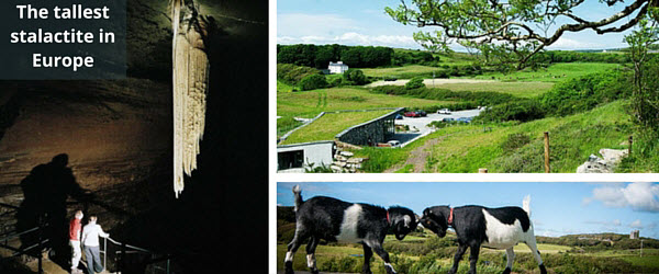 Doolin Cave in County Clare celebrates its 10th year open to the Public