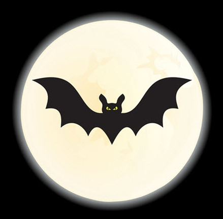 Bat Walks at Belvedere House and Gardens with Bat Conservation Ireland