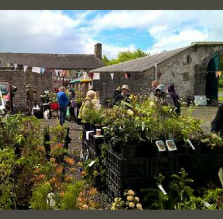 Henry's Courtyard Plant Fair at Strokestown Park